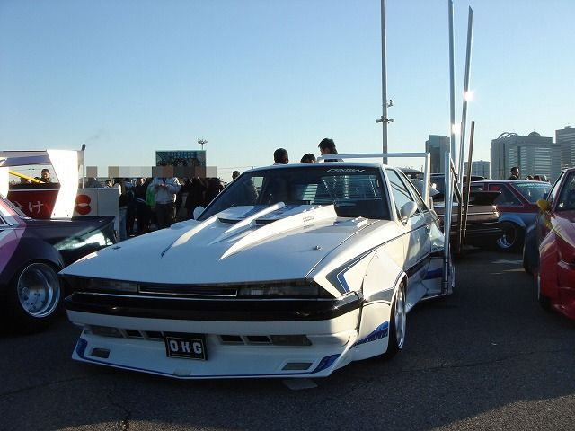 Hot or not: Zig zag sharknose soarer