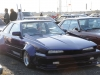 Black Sharknosed Soarer
